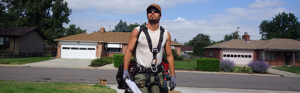 Nerding Out:Solar Panel Maintenancewith Michael Payton