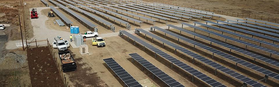 Solar Energy Supports Colorado Jobs and Pollinator Habitat